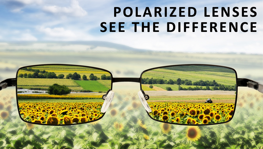Polarized Lenses : See the Difference